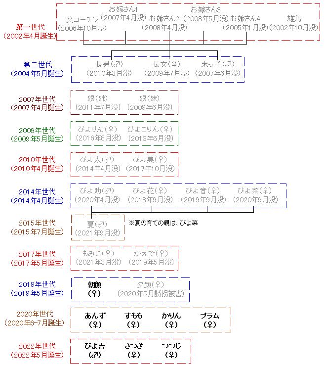 名古屋コーチン一家の家族構成と体重測定